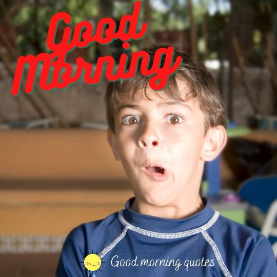 funny images of good morning