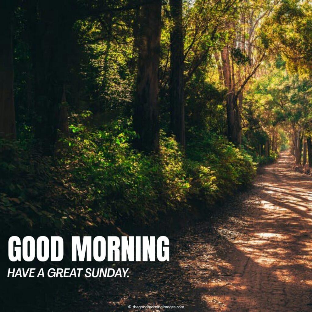 great sunday morning pics