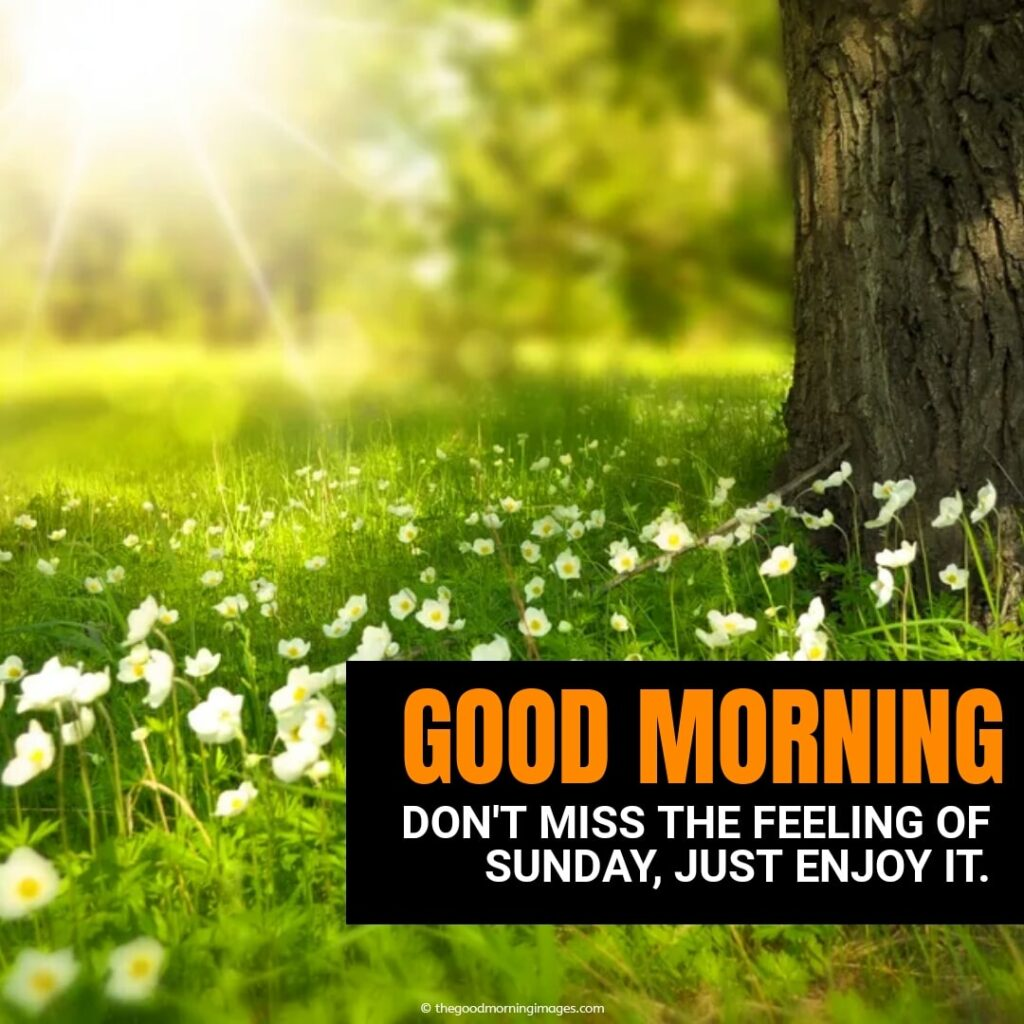 good morning with wishes