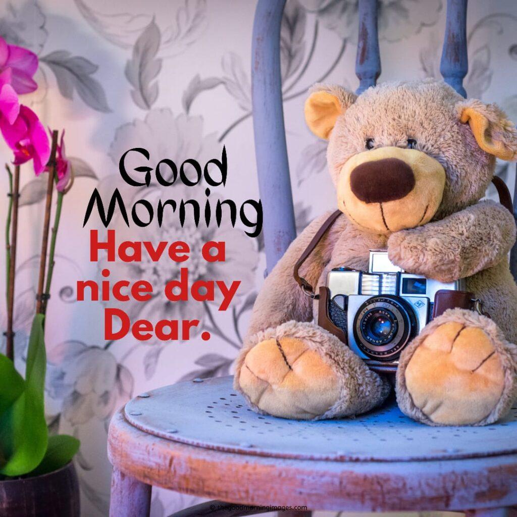 gd morning teddy bear images