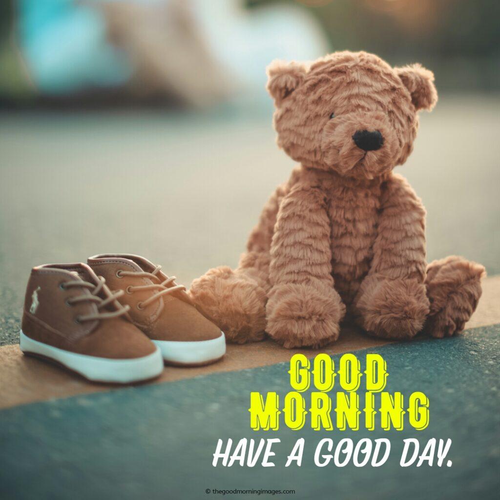 gd mrng teddy bear photos