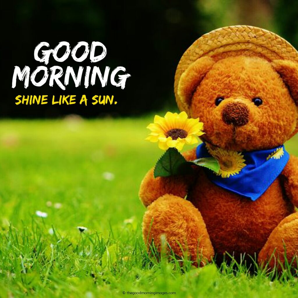 good-morning-images-with-teddy-bear