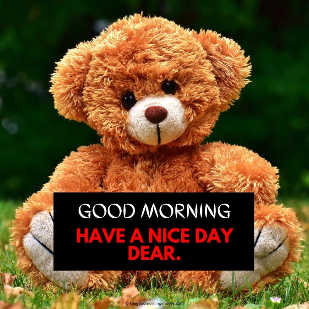 good morning sunshine teddy bear pic