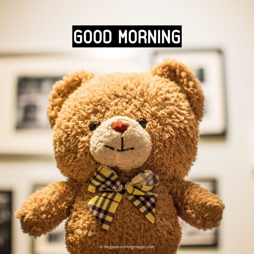teddy bear good morning images