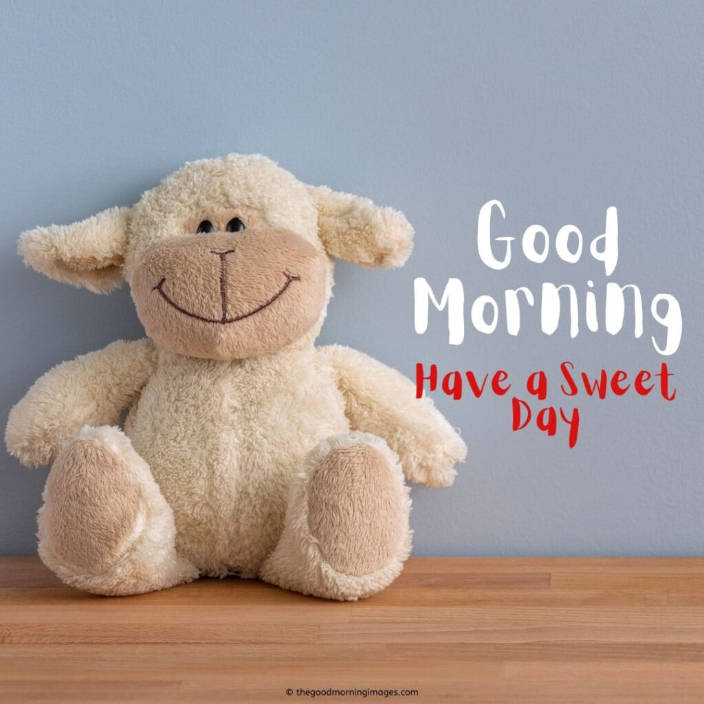 teddy bear good morning images funny