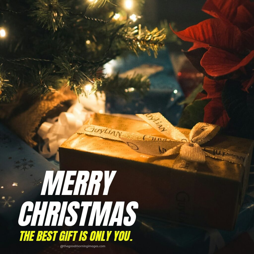 Merry Christmas Images status