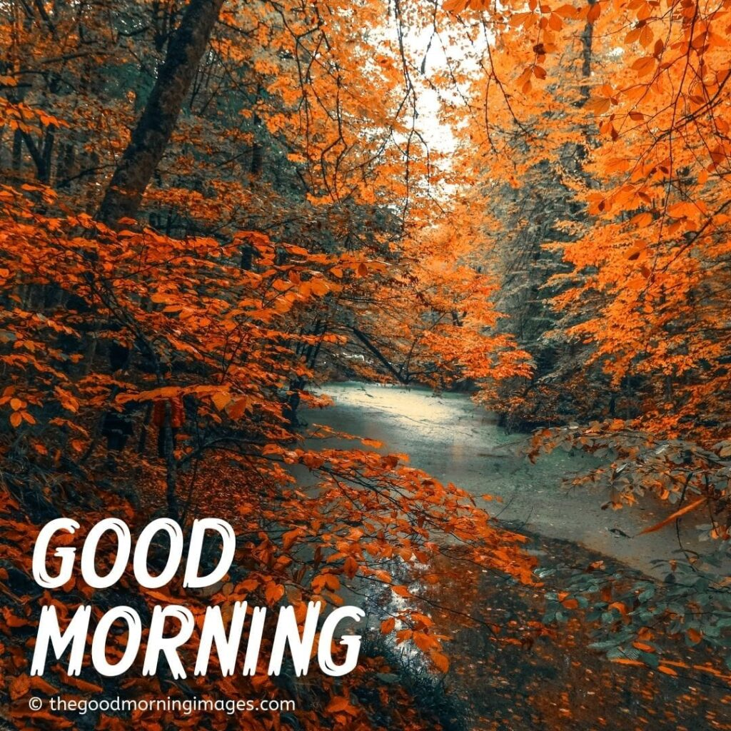 good morning fall images