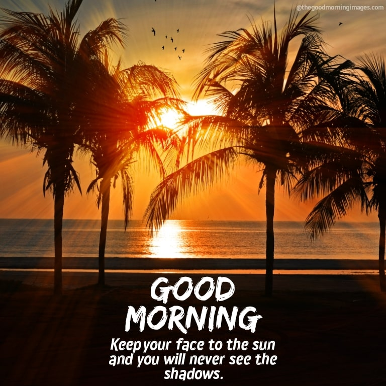 Good morning sunrise images with nature