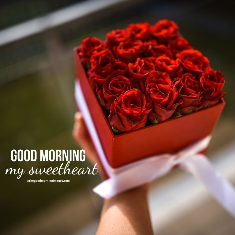 Good Morning Sweetheart pic with rose bundle