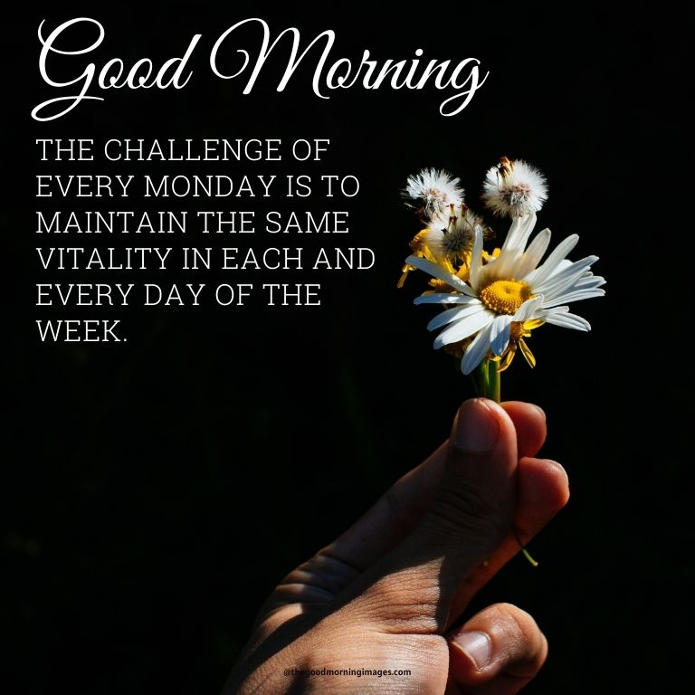 Good morning Monday pic with quotes