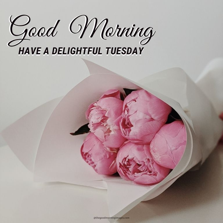 Good Morning Tuesday Images with flowers