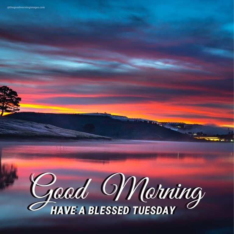 Good Morning Tuesday nature Images