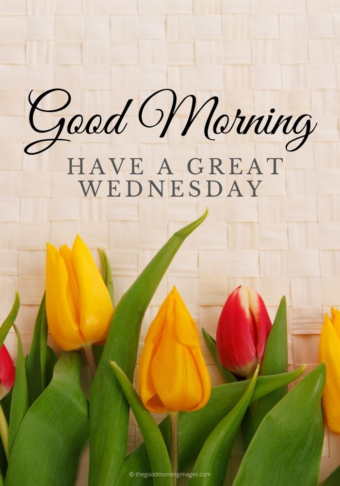 gd morning Wednesday
