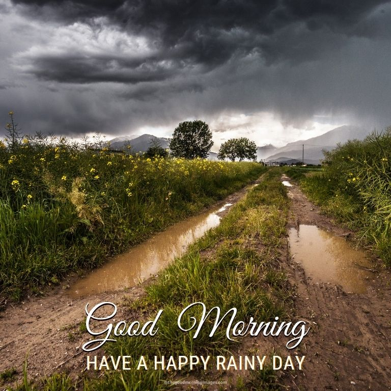 good morning nature rain images with dirt