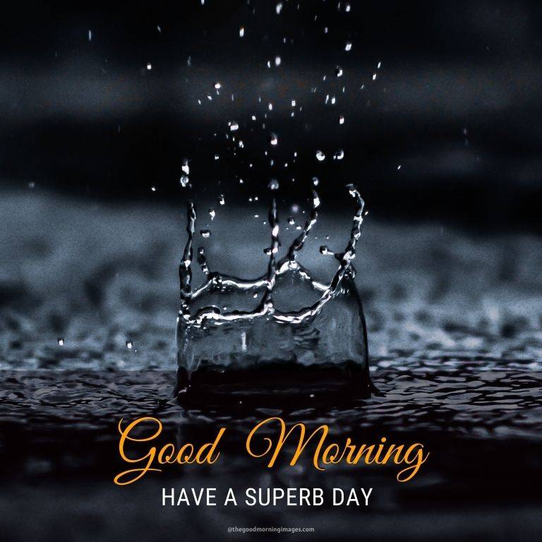 Good Morning Rainy Dripping Pictures