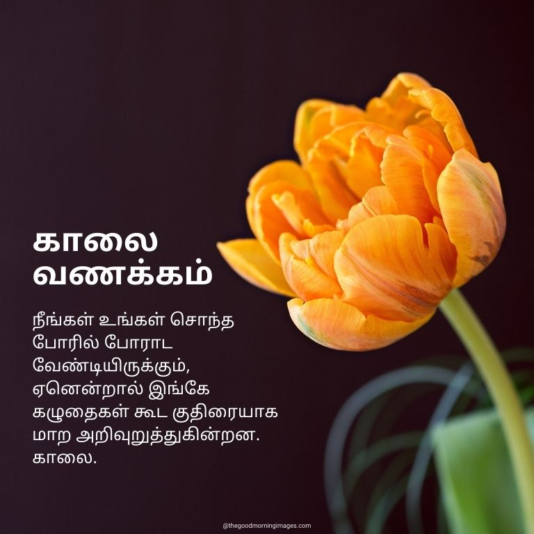 Good Morning pictures in Tamil