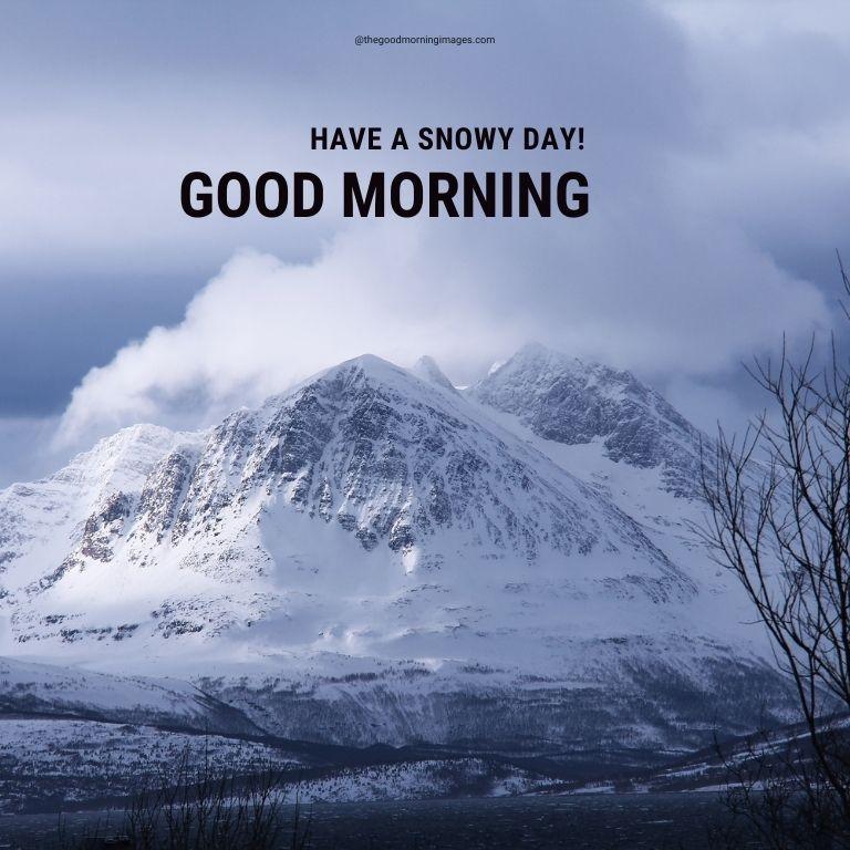 good morning winter pic
