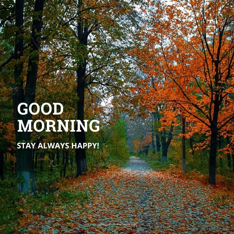 Be Happy Good Morning Images