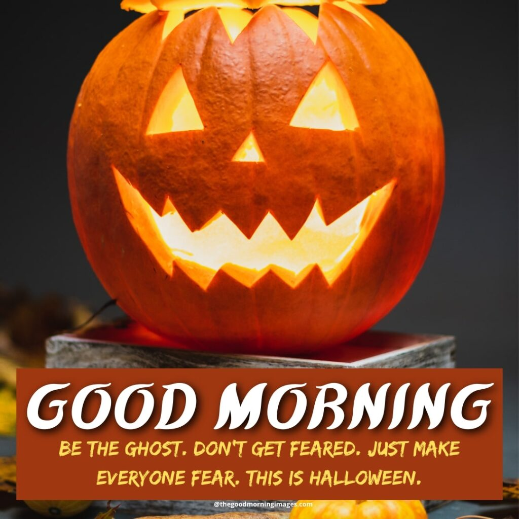Halloween Morning images